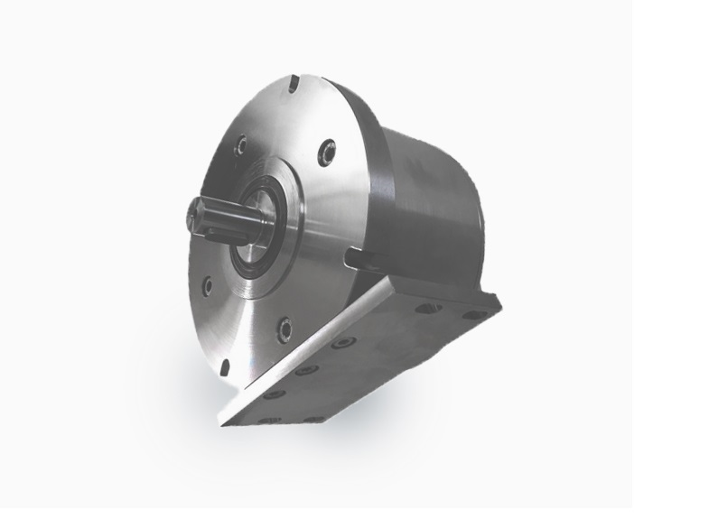 Stainless steel motor with mounting flange